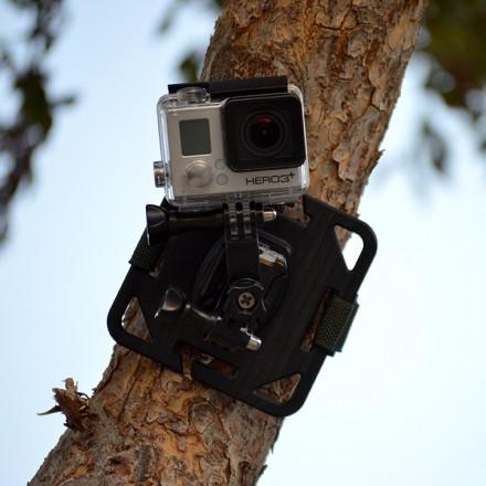 dsc_tree_plate-strap_lr